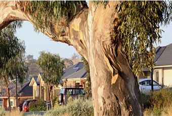 The Future of Australian Housing Design
