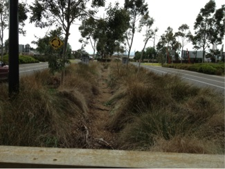 Bio-retention swale at the centre of the road