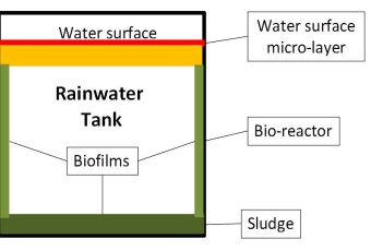 Water Quality in Rainwater Tanks and Mains Water – elements